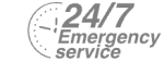 24/7 Emergency Service Pest Control in Ilford, Loxford, IG1. Call Now! 020 8166 9746